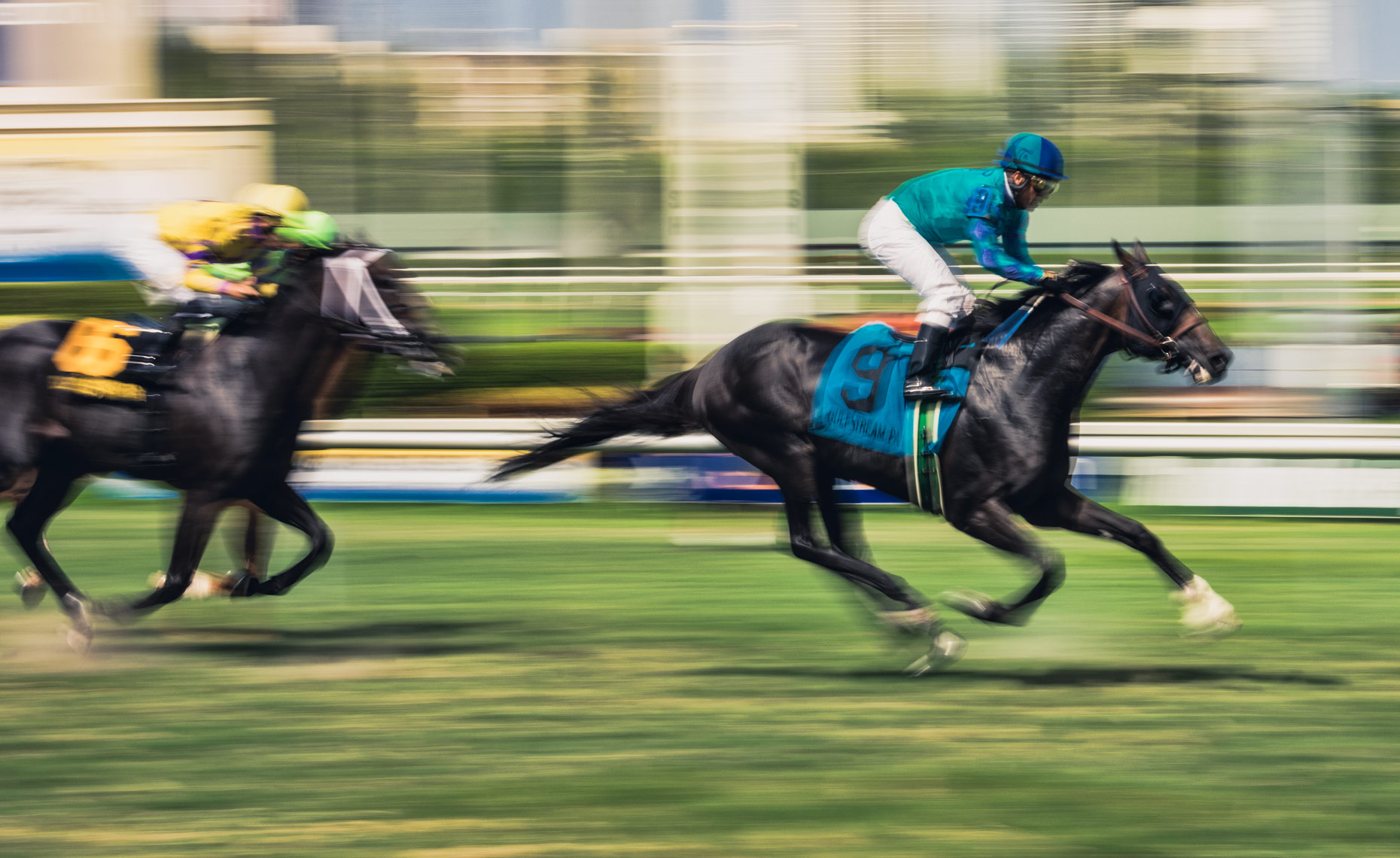 Horse racing at Gulfstream Park by Scott Redinger-Libolt / redphoto